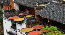 首批248个省级传统村落出炉,传统村落不得随意拆迁。
