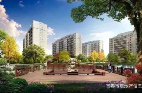 汉港观澜宣传片